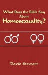What Does the Bible Say about Homosexuality? - David Stewart