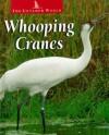 Whooping Cranes - Karen Dudley