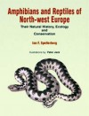 Amphibians & Reptiles of North-West Europe: Their Natural History, Ecology and Conservation - Ian F. Spellerberg