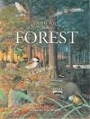 Day & Night in the Forest - Susan Barrett, Peter Barrett