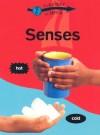 Senses (Everyday Science (Gareth Stevens)) - Peter Riley