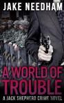 A World of Trouble - Jake Needham