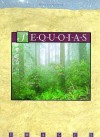 Sequoias - Michael George, Margaret A. Barnes