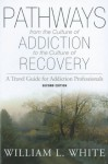 Pathways from the Culture of Addiction to the Culture of Recovery: A Travel Guide for Addiction Professionals - William L. White