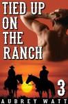 Tied Up on the Ranch (Gay Cowboys Erotic Romance) - Aubrey Watt