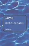Calvin: A Guide for the Perplexed - Paul Helm