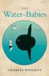 The Water-Babies - Robert Douglas-Fairhurst, Brian Alderson, Charles Kingsley
