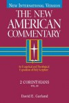 The New American Commentary Volume 29 - 2 Corinthians - David E. Garland
