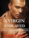 A Virgin Enslaved - Artemis Hunt