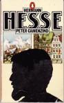 Peter Camenzind - Hermann Hesse