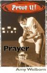 Prove It! Prayer - Amy Welborn