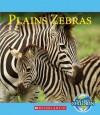 Plains Zebras - Lucia Raatma