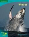 Pobblebonk Reading 5.5 Whales (Pobblebonk Reading) - Dianne Bates
