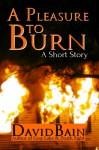 A Pleasure to Burn - David Bain