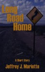 Long Road Home - Jeffrey J. Mariotte