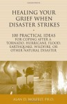 Healing Your Grief When Disaster Strikes: 100 Practical Ideas for Coping After a Tornado, Hurricane, Flood, Earthquake, Wildfire, or Other Natural Disaster - Alan D. Wolfelt