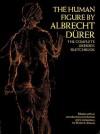 Human Figure - Albrecht Dürer, Albrecht Dürer