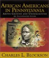 African Americans In Pennsylvania: Above Ground And Underground: An Illustrated Guide - Charles L. Blockson