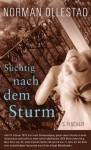 Süchtig Nach Dem Sturm (Roman) - Norman Ollestad, Brigitte Heinrich