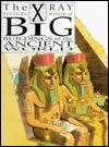 Big Buildings of the Ancient World (X-Ray Picture Book) - Joanne Jessop, David Salariya