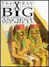 Big Buildings of the Ancient World (X-Ray Picture Book) - Joanne Jessop, David Salariya
