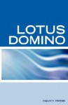 Lotus Domino Programming Interview Questions, Answers, and Explanations: Lotus Domino Certification Review - Terry Sanchez-Clark