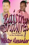 Raising Shawna (Love & Life in the Panhandle) - Vicktor Alexander