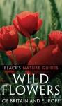Wild Flowers Of Britain And Europe - Margot Spohn, Roland Spohn