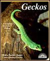 Geckos - Richard D. Bartlett, Patricia P. Bartlett