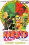 Naruto Vol. 15: Naruto Ninpouchou - Masashi Kishimoto