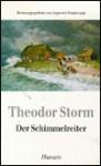 Der Schimmelreiter (Taschenbuch) - Theodor Storm, Ingwert Paulsen