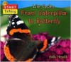 From Caterpillar to Butterfly - Sally Hewitt