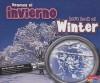 Veamos el Invierno/Let's Look At Winter - Sarah L. Schuette, Gail Saunders-Smith, Martin Luis Guzman Ferrer