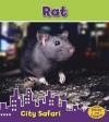 Rat - Isabel Thomas