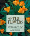Antique Flowers: A Guide to Using Old-Fashioned Species in Contemporary Gardens - Katherine Whiteside