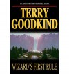 Wizard's First Rule (Sword of Truth, Book 1) [Hardcover] [1994] 1st Ed. Terry Goodkind - Terry Goodkind