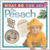 What do You See on Pesach - Bracha Goetz