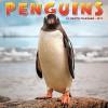 Penguins 2017 Wall Calendar - Willow Creek Press