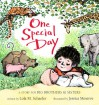 One Special Day: A Story for Big Brothers and Sisters - Lola M. Schaefer, Jessica Meserve