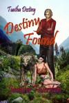 Destiny Found - Jennifer L. Feuerstein