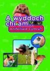A Wyddoch Chi Am Anifeiliaid Cymru? - Elin Meek