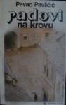 Radovi na krovu - Pavao Pavličić
