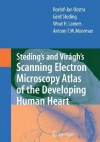 Steding's and Viragh's Scanning Electron Microscopy Atlas of the Developing Human Heart - Roelof-Jan Oostra, Gerd Steding, Wout H. Lamers, Moorman Antoon F. M.