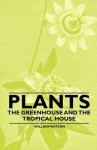 Plants - The Greenhouse and the Tropical House - William Watson