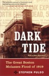 Dark Tide: The Great Molasses Flood of 1919 - Stephen Puleo