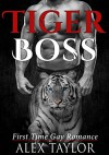 ROMANCE: GAY ROMANCE: Tiger Boss (M/M Straight to Gay first time romance) (Billionaire, Tiger Shifter, Paranormal Romance) - Alex Taylor