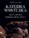 Katedra Wawelska = Wawel Cathedral - Michał Grychowski