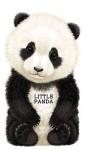 Little Panda - Giovanni Caviezel
