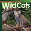 Welcome to the World of Wild Cats - Diane Swanson