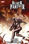 Black Panther: Power - Reginald Hudlin, Reginald Hudlin, Will Conrad